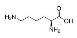Lysine-x